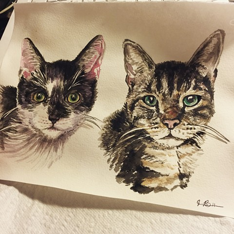 "8"" x 10""  Two Cats"