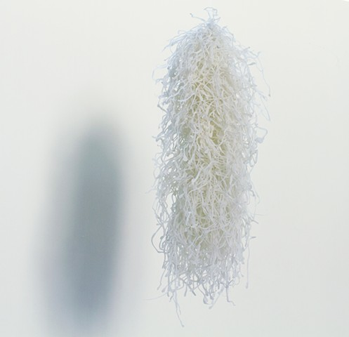 Untitled (salt strings)