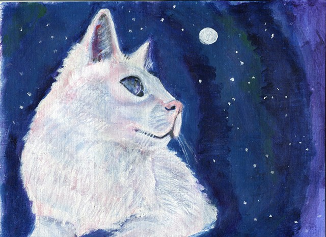 A white cat stares at the moon and the stars in a navy night