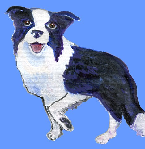 Border collie painted on a blue background