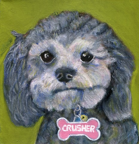 Crusher, commissioned pet portrait