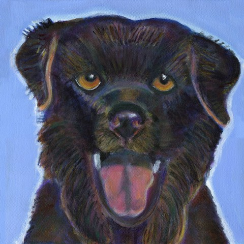 Newfoundland dog painting commission