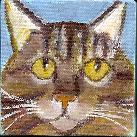Brown tabby painted in acrylics