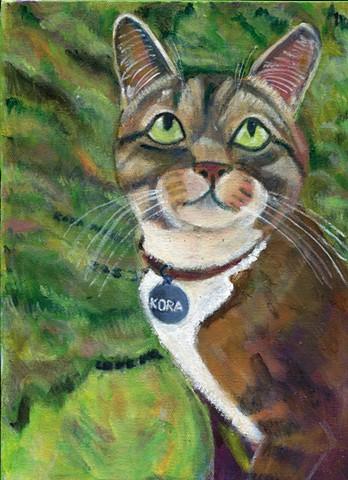 Kora, a tabby cat, gazes into the distance.
