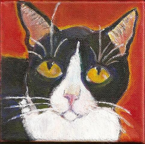 tuxedo cat painting custom painting