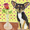 Chihuahua with a rose