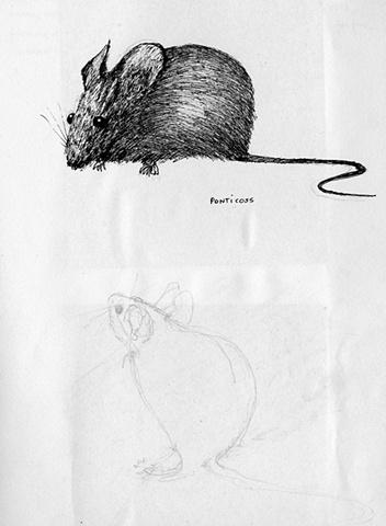 mouse - pondticoss