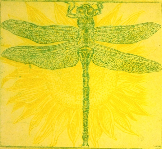 Dragonfly & Sunflower