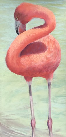 Twisty Flamingo