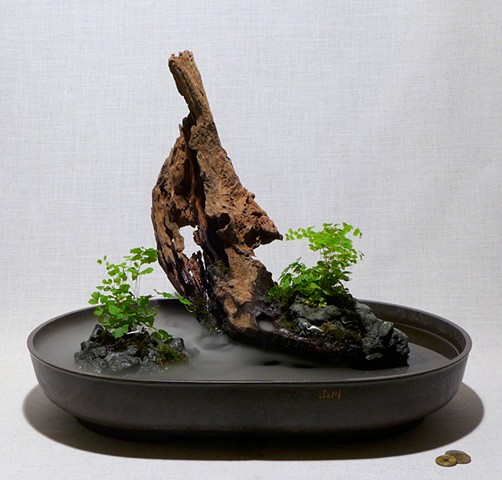 Indoor zen fountain with fogger, Malaysian driftwood, feather rock, and maidenhair ferns