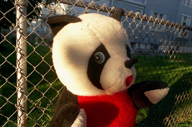 Stuffed panda is propped by a chain link fence and looks apprehensive photographed by Lucy Mueller