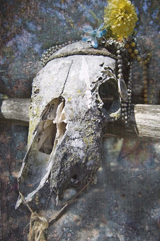 composite of a cow skull in a cemetary decorated with a flower and beads as a tribute to a loved one photographed by lucy mueller