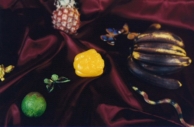"""Still Life with Rotten Fruit"""