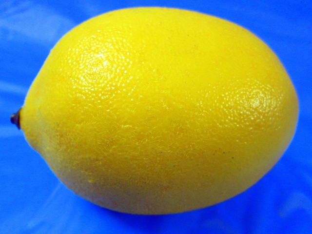 Sense of Herself (Lemon) 1 out of over 750 different images 1995-present