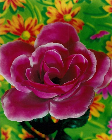 """Sense of Herself"" (Fake Rose) 1 out of over 750 different images 1995-present"