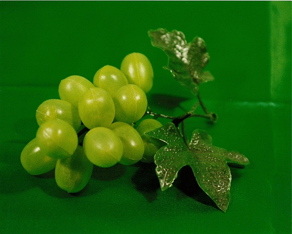 """Sense of Herself"" (Plastic Grapes) 1 out of over 750 different images 1995-present"