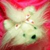 Luv Bunnies (Dog)