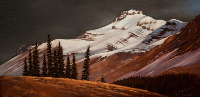 """Conifer Stand, Rockies"""