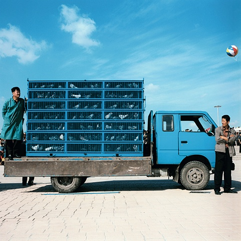 Caged Pigeons, Changchun, China 2003