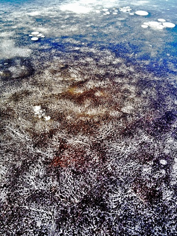 Frozen Fish Pond, #3