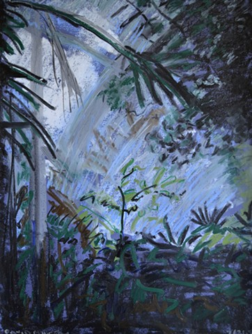 Plants in Greenhouse, oil pastel, botanical, david murphy, irish, ireland, dublin,