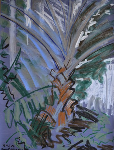palm tree, greenhouse, botanic gardens, oil pastel, acrylic, ireland, dublin, david murphy