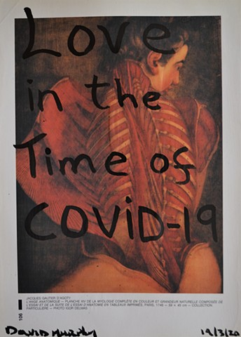 Love in the Time of COVID-19, de Sade, drawing, Indian ink, david murphy, artist