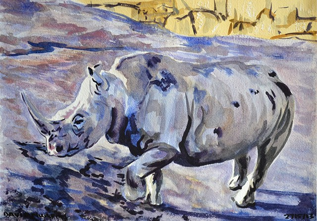 Rhinoceros,  watercolour, realist, david murphy