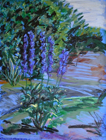 the national botanic gardens, garden, botanical, painting, oil pastel, irish, ireland, dublin, david murphy