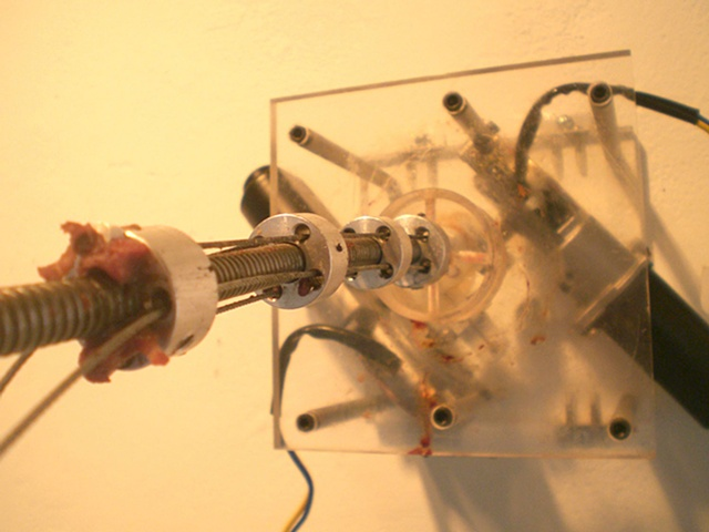 Lie: Robotic Cow Tongues [2007] by Doo Sung Yoo
