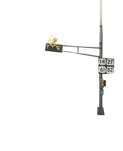 #3 Little Dog and Stop Light