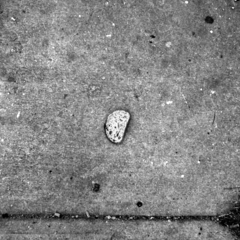 Lost Bread / Austin Sidewalks