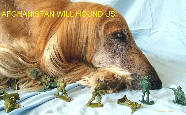 AFGHANISTAN WILL HOUND US. IT'S GOING TO BE WOOF, VERY WOOF.