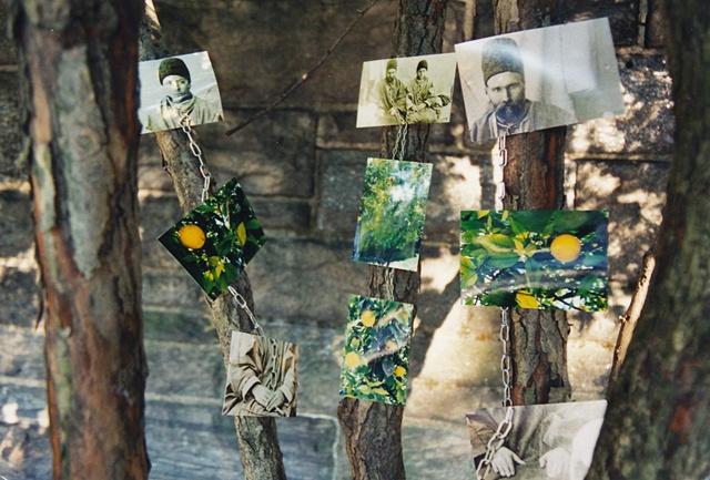 the orange tree installation piece