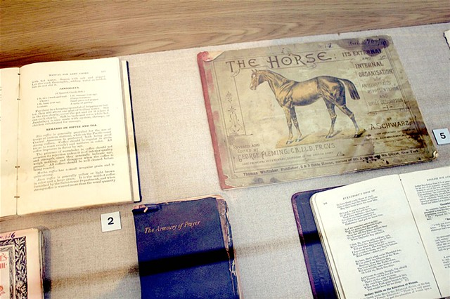 Ziegler/ Fiala checkbook, horse anatomy, and ship cookbook