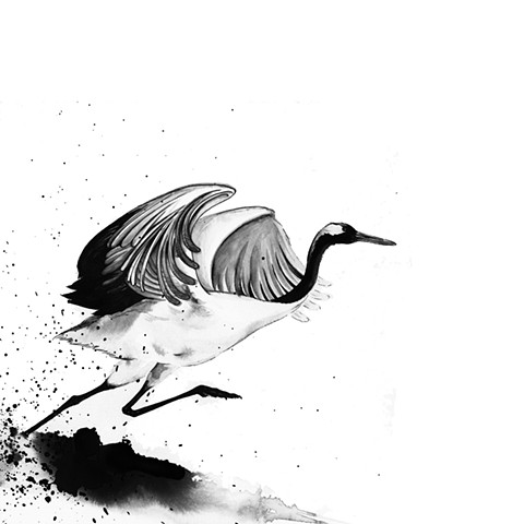 King of Birds - Red Crowned Crane