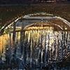 Lower Schuylkill River Bridges at Night
