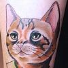 Mr Kitty by Kitty Dearest