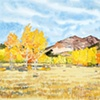 BOULDER MOUNTAIN ASPENS