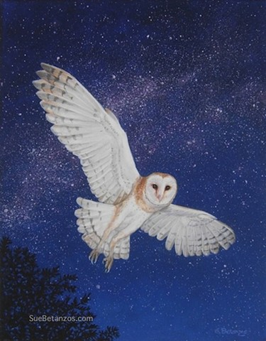 barn owl, owls, owl art, Barn Owl Print, SueBetanzos, birds, raptors, wildlife art, barn owl art, starry night, milky way art