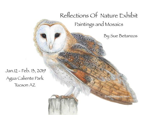 Reflections Of Nature Exhibit, Paintings and Mosaics