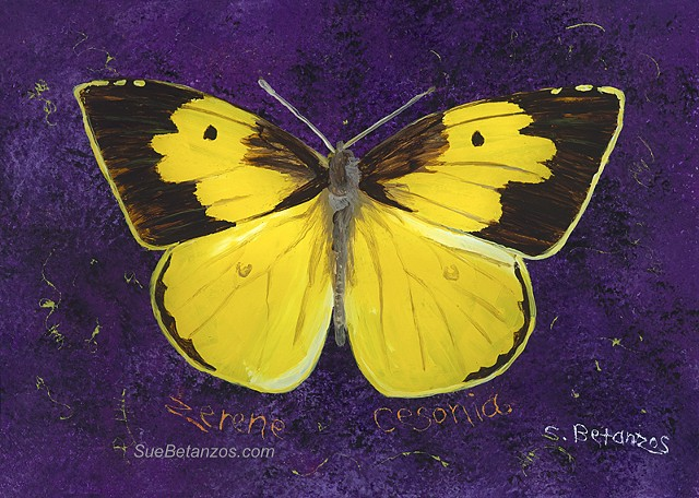 Dog and Butterfly painting, Sue Betanzos Art, Christmas gift, holiday gift, Christmas art, California butterfly, Glass painting, glass art, art glass, painting on glass, reverse glass painting, butterflies, Sue Betanzos, butterfly painting, reverse glass