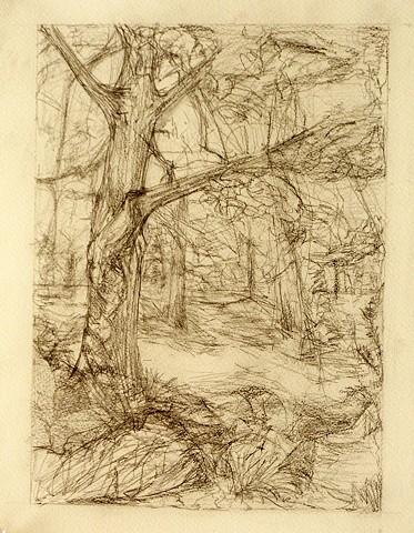 Gestural Landscape