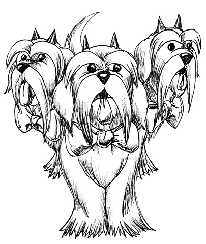 Three- Headed Hell Shih Tzu. Card Artwork. Monster Type: He guards the Gates to the UnderWorld... and he looks ADORABLE!