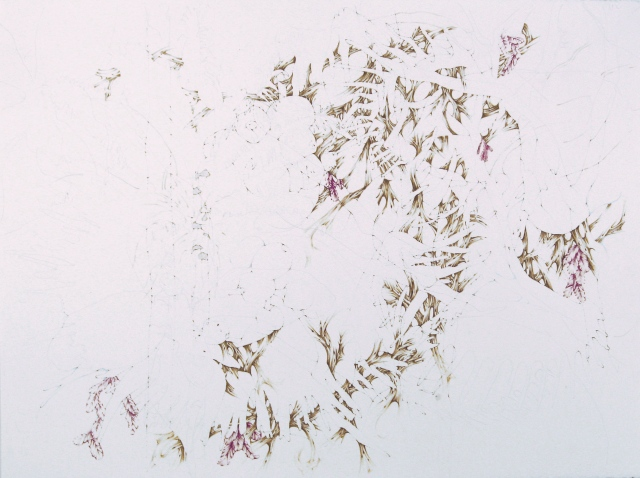 Composite Drawing:  Plants