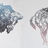 Hologram Buffalo