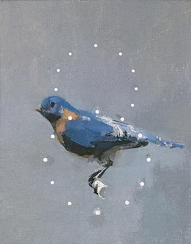 Bluebird w/halos