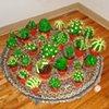 Cactuses (Adam)
