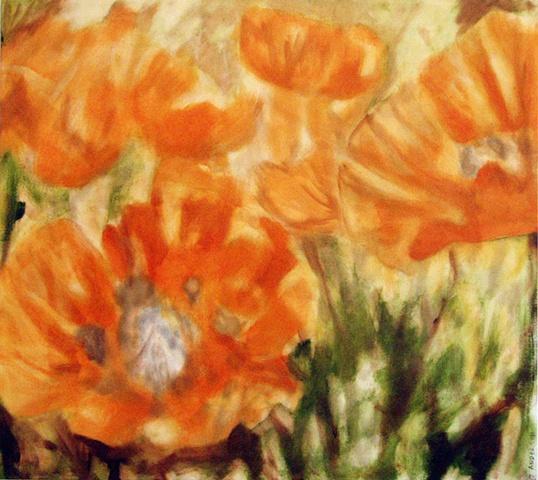 Derbyshire Poppy