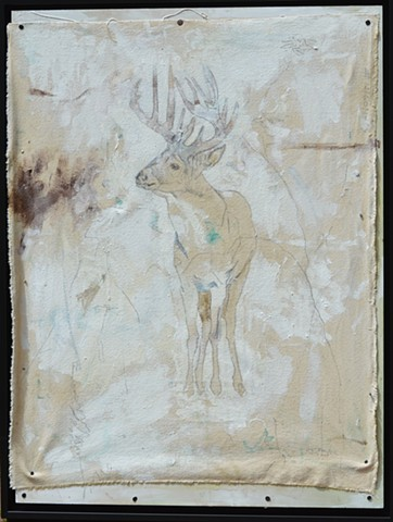 Original Deer Buck Animal Art by Artist Katherine Bell McClure